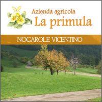 Azienda Agricola, La Primula